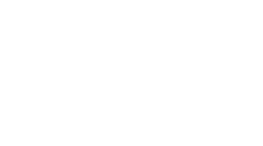 American Financial Management Group White Logo